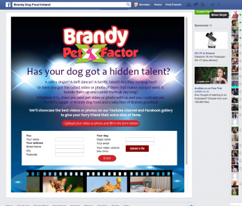 Brandy Facebook Pet Factor